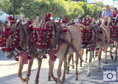 feria-malaga-2016-real-cortijo-torres-enganche-mulas