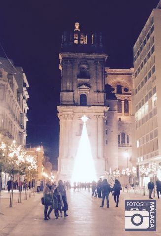 navidad-malaga-2016-catedral-3