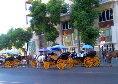 alameda-principal-parada-coches-de-caballo