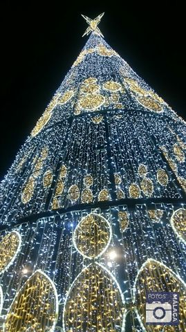 navidad-malaga-2016-arbol-navidad-plaza-de-la-marina