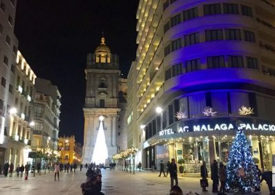 vidad-malaga-2016-hotel-ac-malaga-palacio