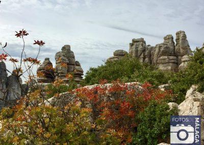 Torcal-de-Antequera-en-otoño