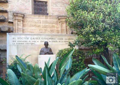 catedral-de-malaga-la-manquita-busto-doctor-galvez-ginachero-jardines